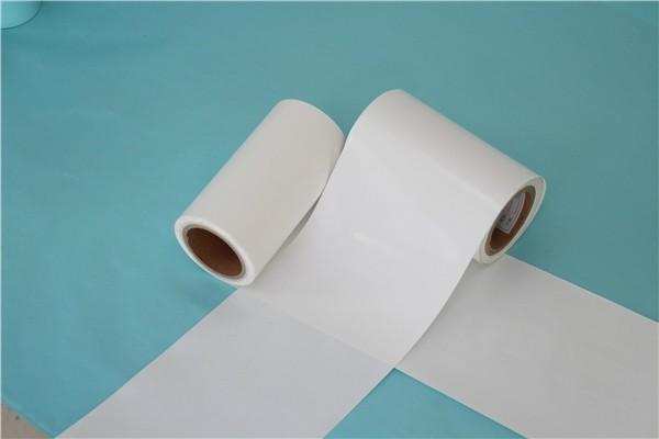 本白离型纸